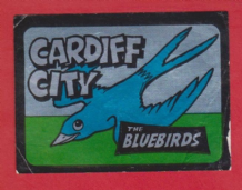 Cardiff City The Bluebirds